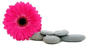Flower_Pebble